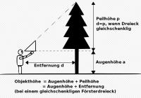 Försterdreieck_Quelle_Wikipedia